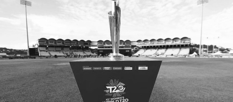 T20 world cup | Vantage Point Event