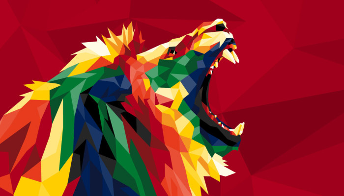 British & Irish Lions Tour Ticket & Travel Packages